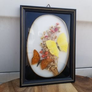 Vintage Butterfly Flower Display Wall Art
